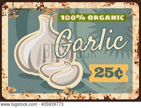 Garlic Rusty Metal Plate, Vegetables Farm Market Food Price Menu, Vector Retro Poster. Green Vegetab