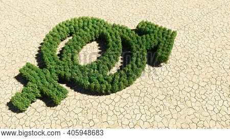 Concept or conceptual group of green forest tree on dry ground background, sign of gender signs. A 3d illustration metaphor for heterosexual relationships, couples, romance and family