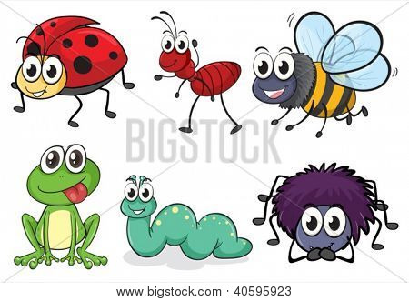 Illustration of various animals and insects on white