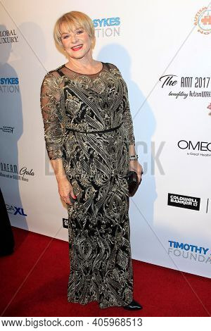 BEVERLY HILLS - NOV 11: Joanne Lara at AMT's 2017 D.R.E.A.M. Gala benefiting Autism Works Now at Montage Beverly Hills on November 11, 2017 in Beverly Hills, California
