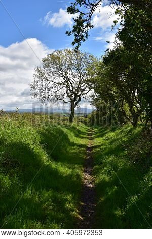 Rural Dirt Footpath Through Northern England's Countryside.