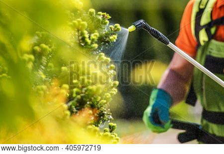 Gardener With Professional Insecticide Fertilizer Equipment. Worker Spraying Trees Close Up Photo.