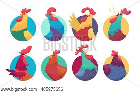 Rooster Avatars. Cartoon Chicken And Roosters, Colorful Farm Birds Stickers Vector Set. Illustration