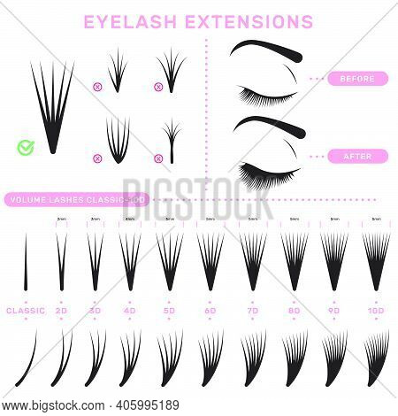 Eyelash Extension Infographics. Volume Boost Guide, Fake Lashes Application, Eyelashes Cluster Set.