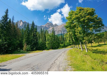 Asphalt Road Through Forested Mountains. Beautiful Countryside Transportation Background. Composite