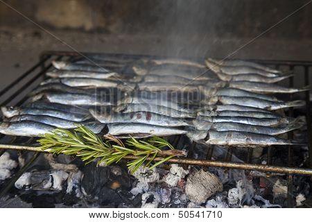 Fresh Mediterranean fishes on BBQ