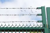 Royalty Free Stock Image of three rows of barbed wire against cloudy blue sky with birds in flight in background providing the concept of freedom or 'free as a bird' so to speak poster