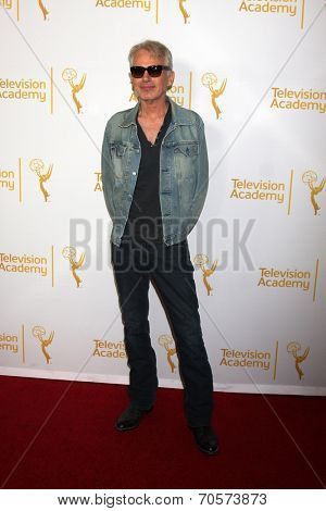 LOS ANGELES - AUG 22:  Billy Bob Thornton at the Television Academy�¢??s Producers Peer Group Reception at London Hotel on August 22, 2014 in West Hollywood, CA