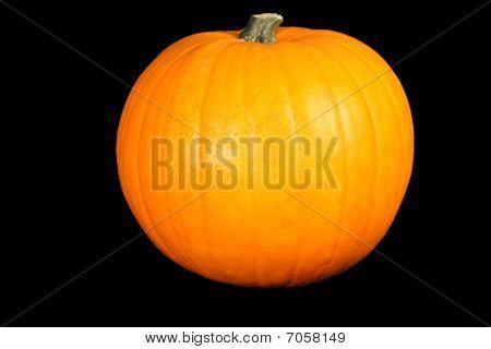 Pumpkin On The Black Background