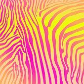 savannah pattern vector background vector design vector elements zebra zebra background poster