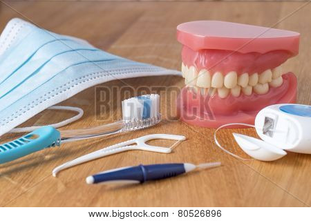 Set Of False Teeth With Cleaning Tools