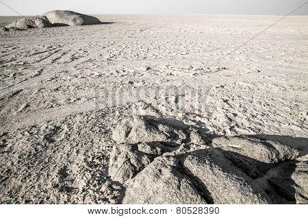 Salt Pan Landscape