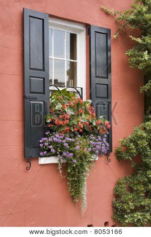 Charming Window Box