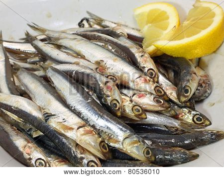 Dish With Fresh Little Sardines Just Fished And Lemon