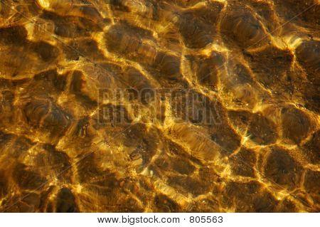golden waves