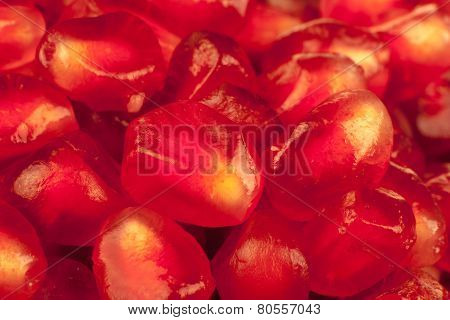 Macro Image Of Pomegranate Arils