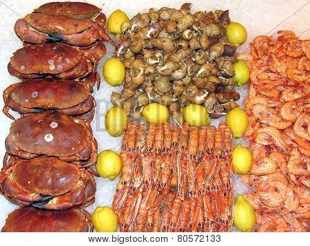 fresh uncooked Seafood