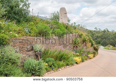 Garden On A Wine Farm Near Stellenbosch.