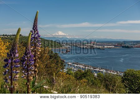 Port Of Tacoma And Mountain 3