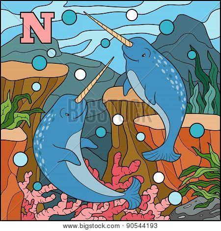 Color Alphabet For Children: Letter N (narwhal)