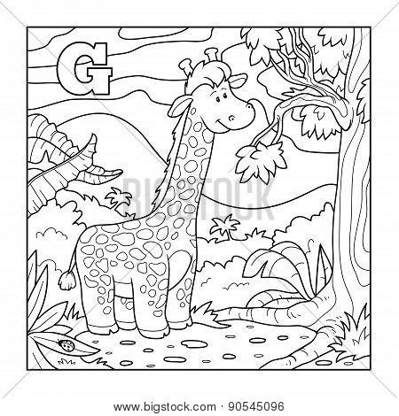 Coloring Book (giraffe), Colorless Alphabet For Children: Letter G