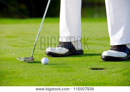 Golfer Putting On Green, Detail