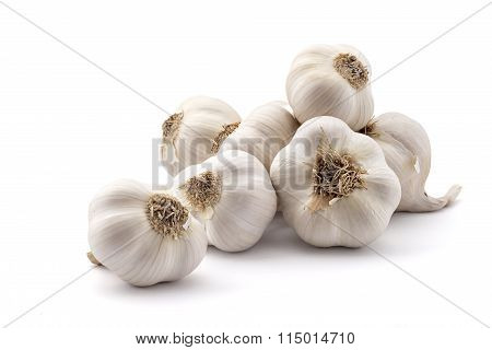 Pile of organic garlic