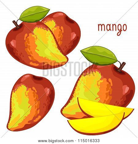 Mango Isolated, Vector.