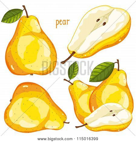 Pear Isolated, Vector.