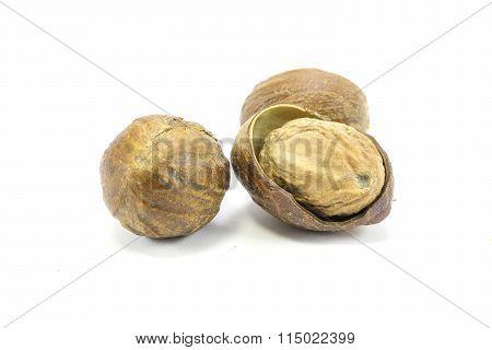 Nutmeg  Seed Spice