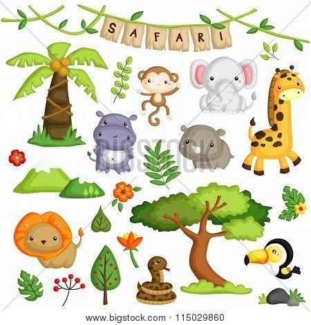 Safari Forest Animal Vector Set