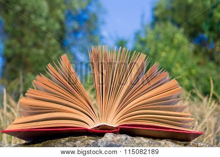 Opened hardback book diary, fanned pages on blurred nature landscape backdrop, lying in summer field on green grass. Books stacking. Copy space, back to school education background. poster