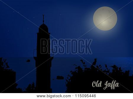 Silhouette of minarets against the night sky