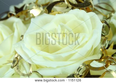 Attractive White Rose Background