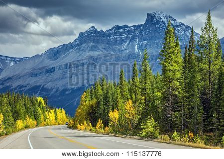 Majestic mountains and glaciers on the background of cloudy sky. Bright yellow aspen and birch beside the road. Canadian Rockies, Banff National Park in the autumn