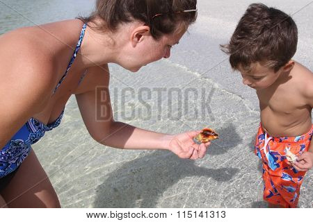 Woman and child looking at shell with snail inside on a sandy beach