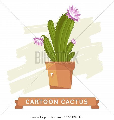 Cactus flower, cactus isolated.