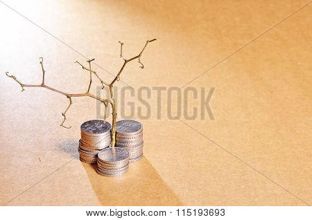 Stack Of Golden Coins And Dead Plant