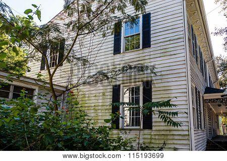Algae On Old Wood Siding Home