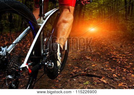 cyclist man legs riding mountain bike