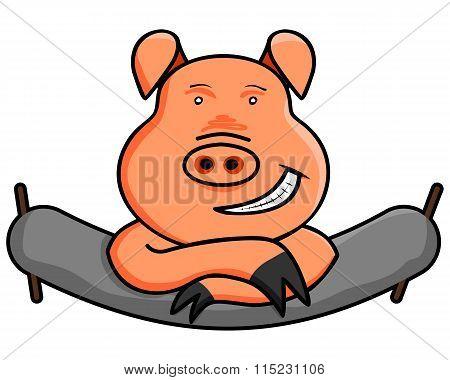 Funny Domestic Pig