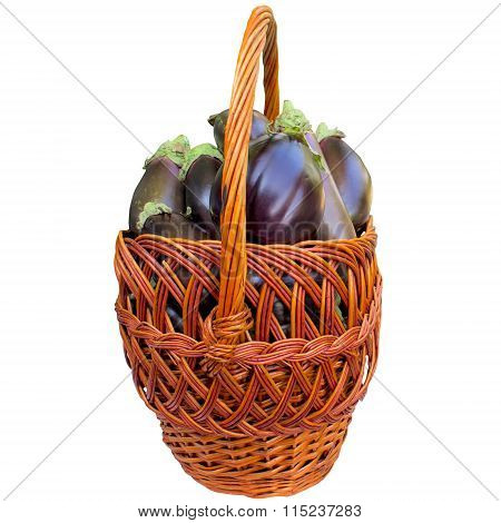 Basket With Fresh Eggplants.