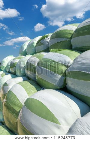 White green silage bales