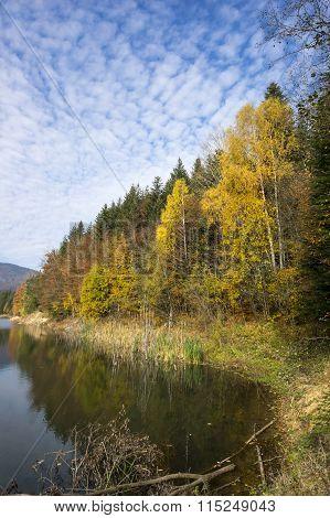 Autumn Tree Mountain And Lake