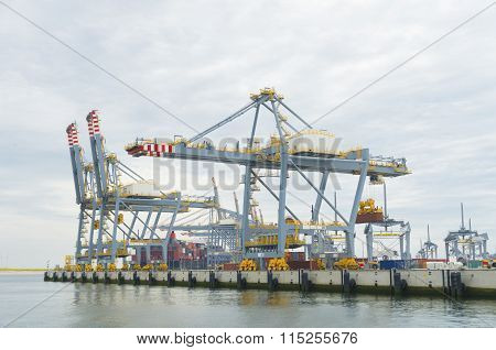 Large Harbor Cranes