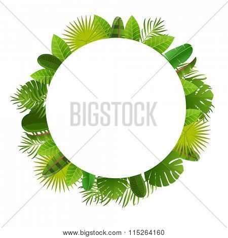 Tropical leaves frame. Floral jungle design background. Palm, banana, frangipany, monstera, strelitzia leaves.