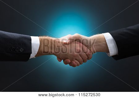 Closeup Of Businessmen Shaking Hands