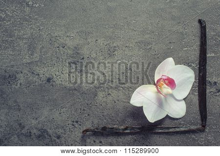 Vintage Photo, Blooming Orchid And Fragrant Vanilla Sticks, Copy Space For Text