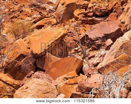 Bushman prehistoric rock engravings in Twyfelfontein