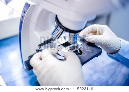 Close-up Of Scientist Hands With Microscope, Examining Samples And Liquid